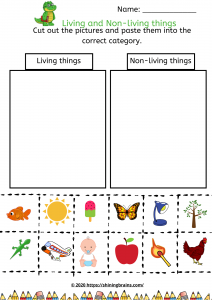 living and non living things worksheet Activities