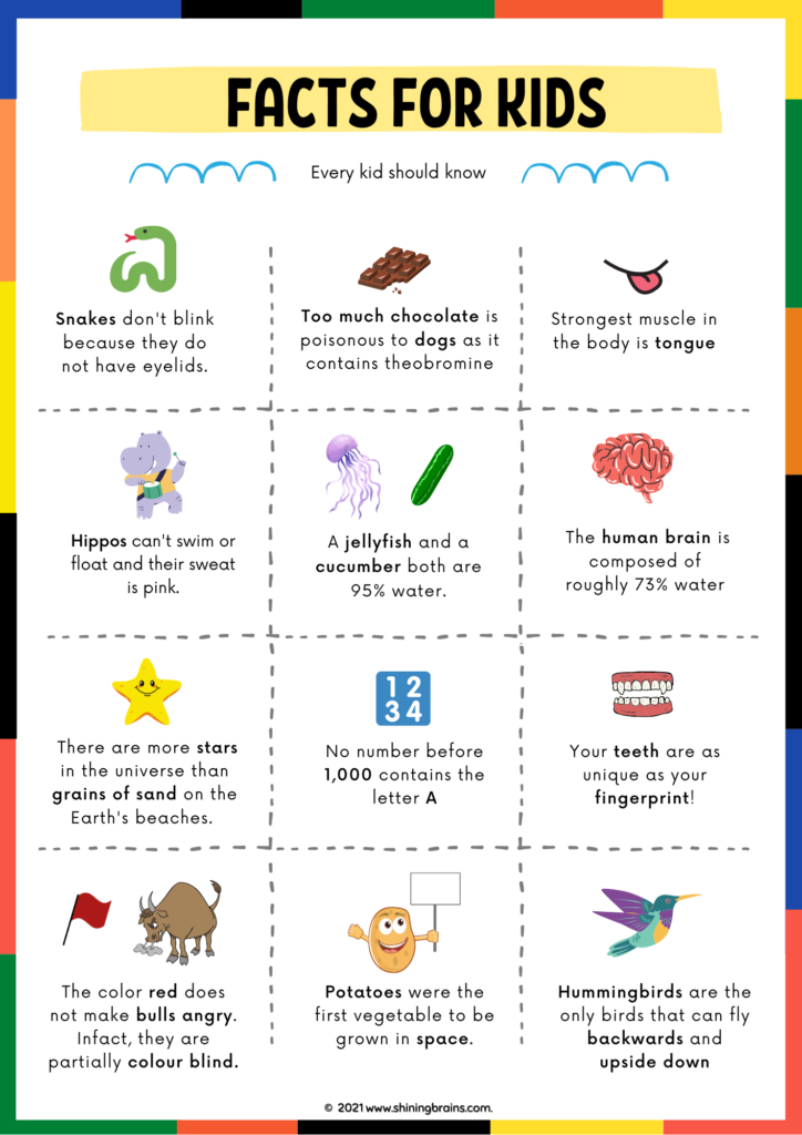 Amazing facts every kid should know | random facts for kids