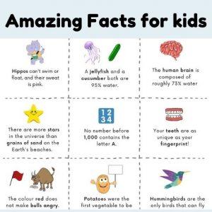 Random facts for kids