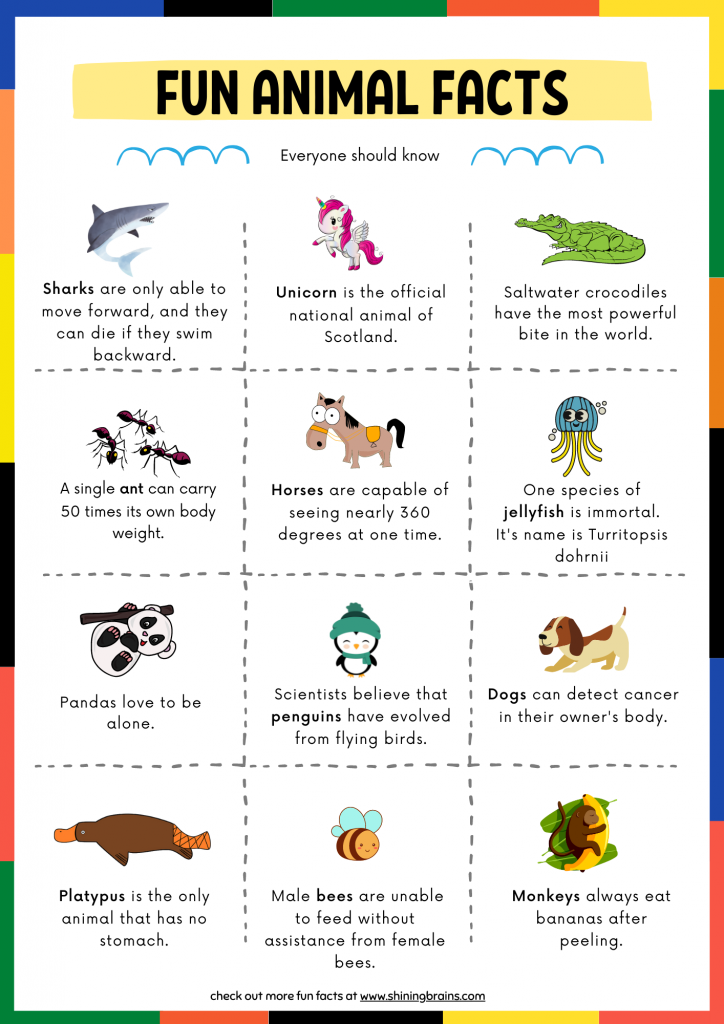 fun facts for kids   animal facts   fun facts about animals