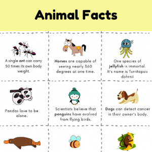 fun facts about animals for kids